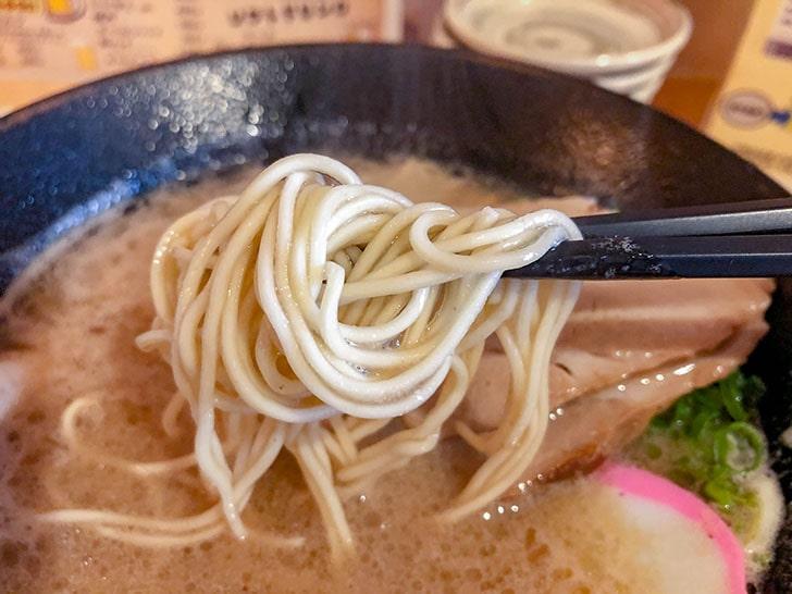 和歌山ラーメンの麺
