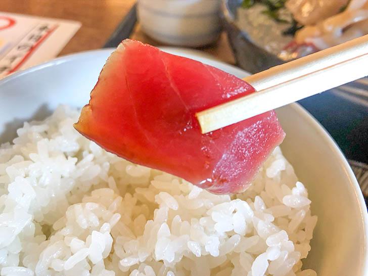 陣笠 マグロ