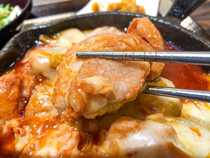 ふくふくパンチャンの家 柔らかい鶏肉