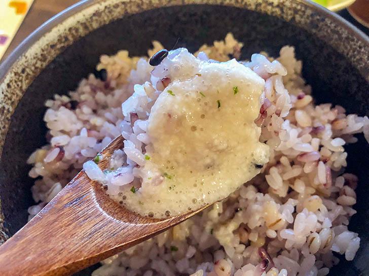 加賀丸芋麦とろ 陽菜 ご飯、とろろ